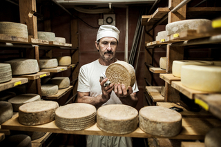 Cheese Makers Spotlight Category Image