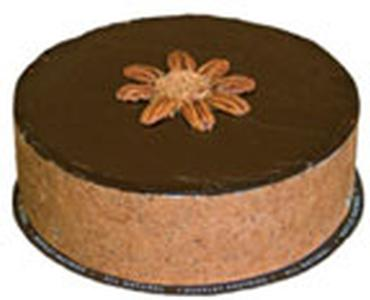 Turtle Fudge Cake Product Image