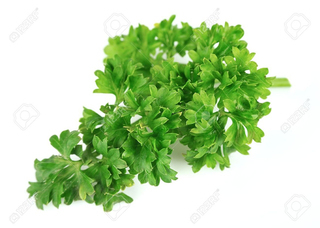 Curly Parsley Product Image