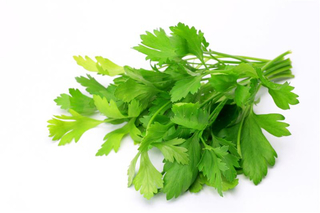 Italian Parsley Product Image