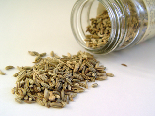 Dion Spice - Fennel Seed Product Image